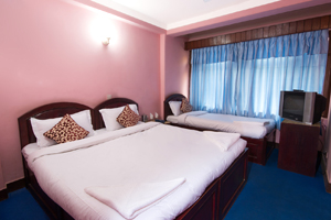 Hotel Thamel Lily Family Bed